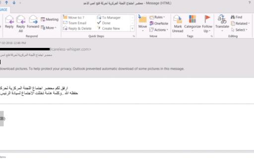 Gaza Cybergang Group1, operation SneakyPastes